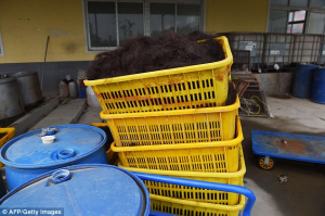 The hair is boxed up before it is disinfected, dyed and dried and is then sold across the globe