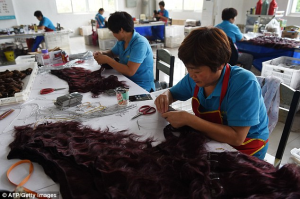 According to the World Trade Organisation's International Trade Centre, China exported nearly 75 per cent of the world's 'bird skin, feathers and human hair' products in 2012